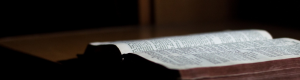 Bible for Christian Counseling