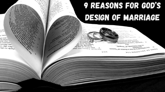 Reasons for God's Design in Marriage